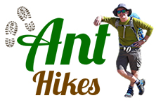 Ant Hikes